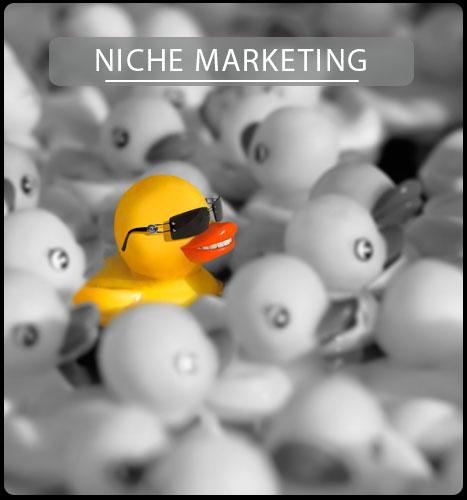 Niche Marketing Services